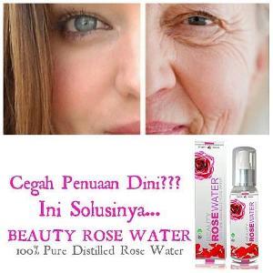 beauty rose 3