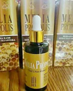 melia propolis new 10
