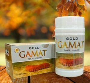 Kapsul Gamat Gold Original BPOM