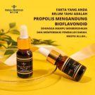 PRIMA PROPOLIS PLUS Original BPOM